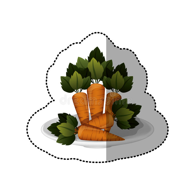 Colorful sticker of carrots vegetable. Vector illustration vector illustration