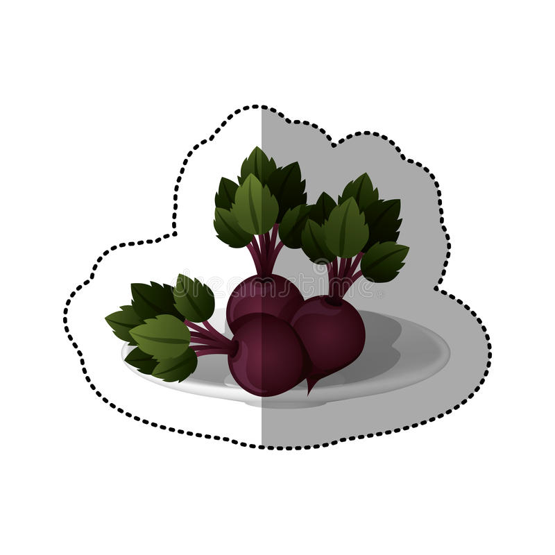 Colorful sticker of set collection beets vegetable. Vector illustration stock illustration