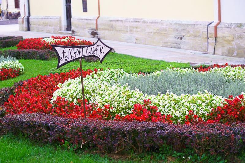 Colorful street in baroque town Varazdin view, tourist destination, northern Croatia. Varazdin Baroque Evenings. Varazdin, Croatia. 09.21.2018. Colorful street royalty free stock photo