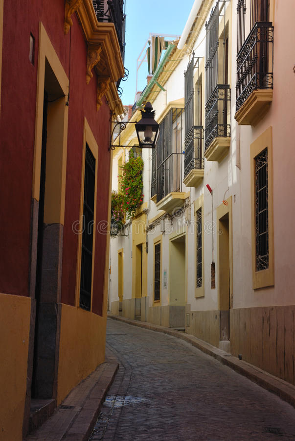 Download Colorful Street Cordoba stock photo. Image of andalusia - 25567232