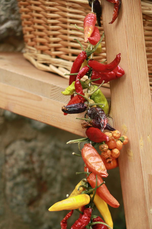 Colorful strung peppers. Different strung peppers hanged on side of wooden shelf royalty free stock photography