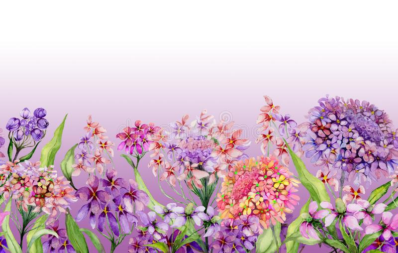 Colorful summer wide banner. Beautiful vivid iberis flowers with green leaves on pink background. Horizontal template. Seamless panoramic floral pattern stock illustration