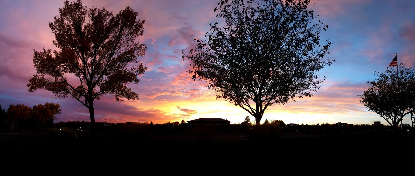 Colorful Sun Set over the city with Tree Silhouettes royalty free stock image