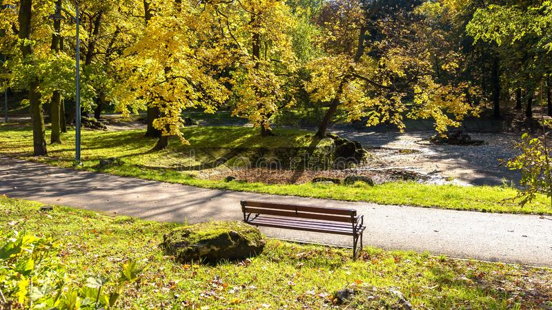 Colorful sunny autumn in a park royalty free stock image