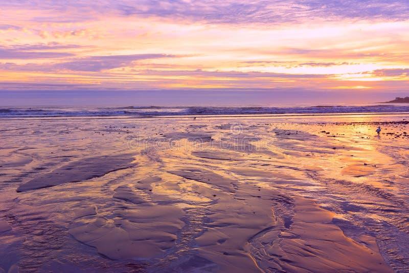 Colorful sunrise on the coast of the Atlantic Ocean. USA. Maine. stock photos