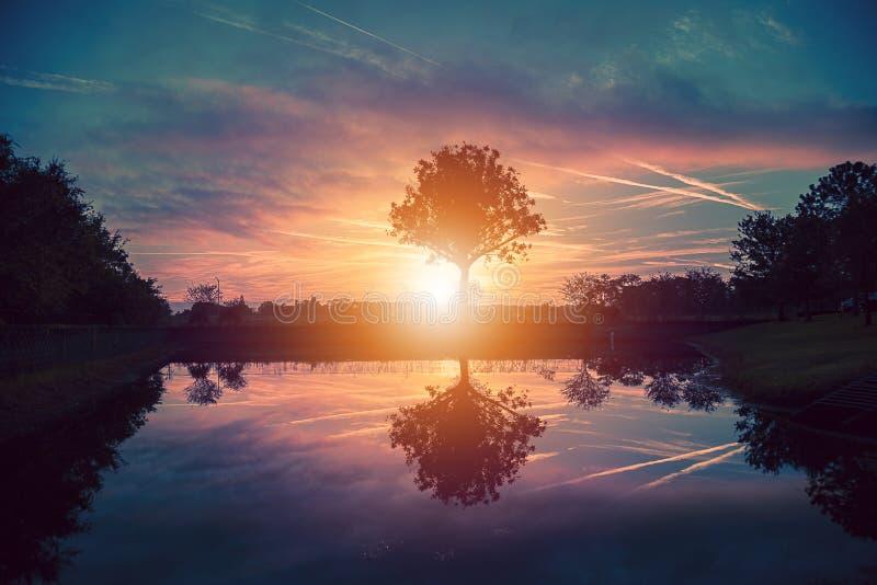 Colorful sunrise in Orlando Florida stock photography