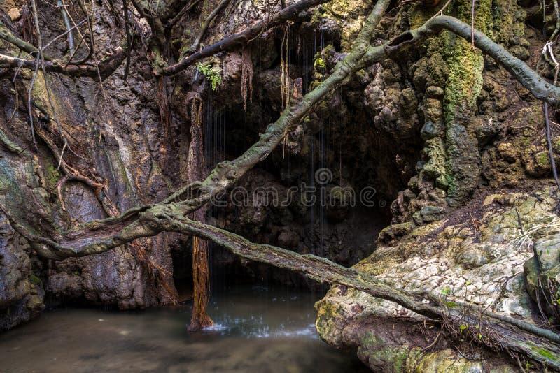 Baths of Aphrodite - Cyprus famous natural monument stock photos