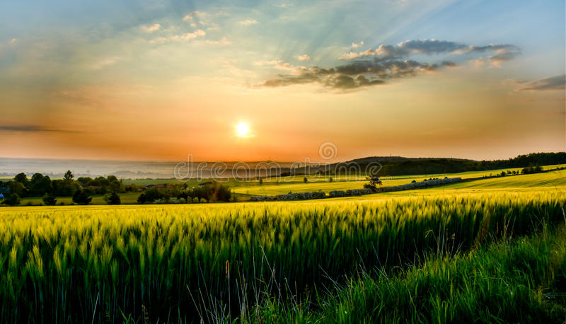 Colorful sunset over the field with sky. stock photography
