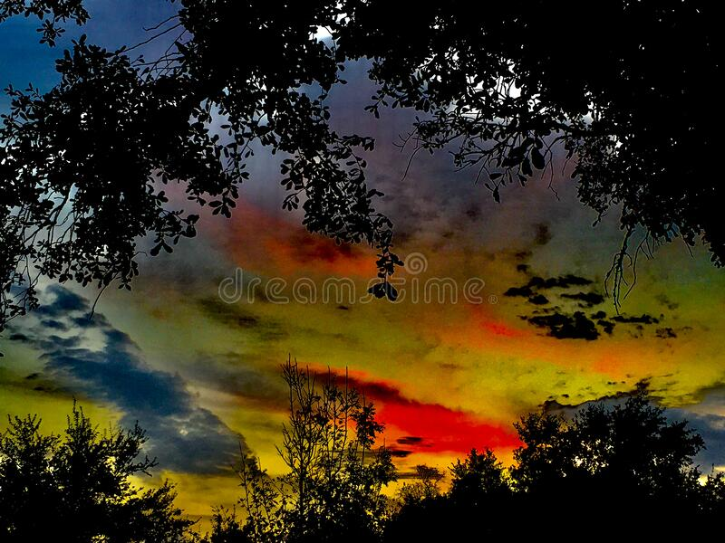 Colorful sunset over tree tops stock image