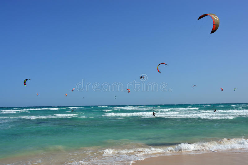 Colorful surfing kites over the emerald ocean vawes royalty free stock photography