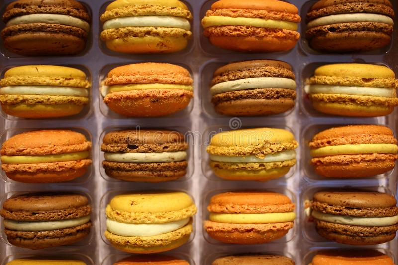 Colorful french macarons background close up. Colorful sweet assorted french macarons cakes close up for web page background stock photo