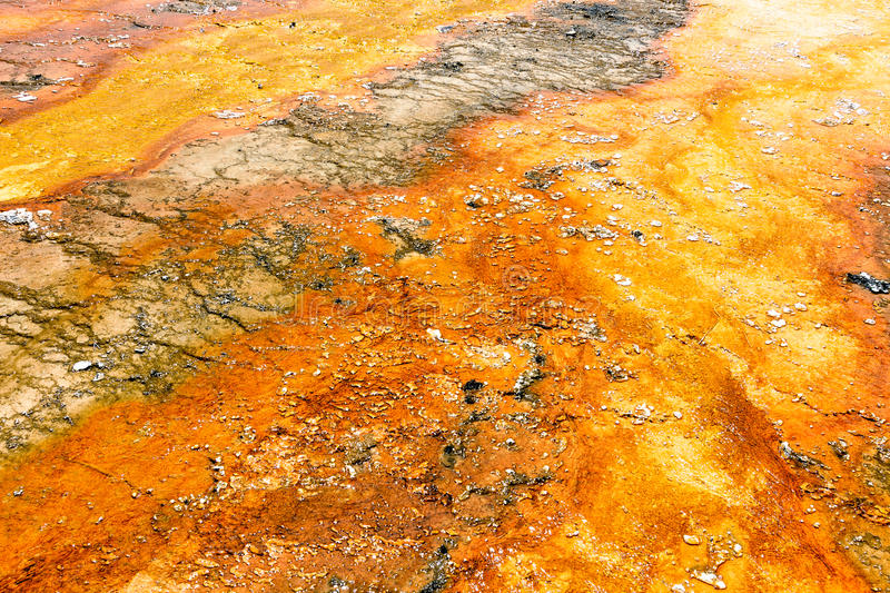 Colorful textures on Yellowstone National Park stock photos