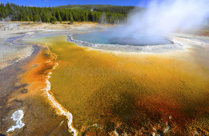Colorful thermal pool geyser, yellowstone national park, usa. Boiling steamy water in colorful thermal pool/ geyser, yellowstone national park, wyoming, united royalty free stock images