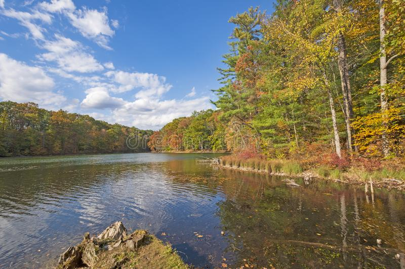 Colorful Trees on a Calm Fall Day stock photography