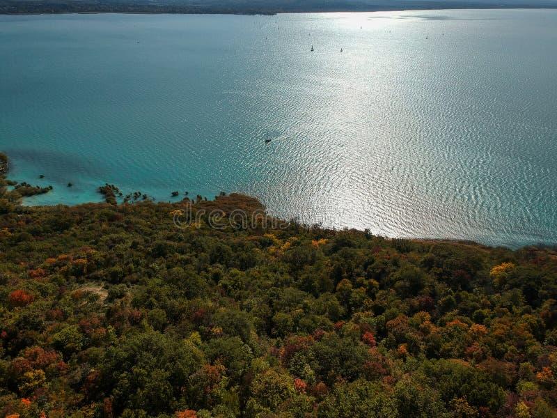 Colorful trees at lake Balaton, Hungary at autumn. Colorful trees at lake Balaton, Hungary stock images
