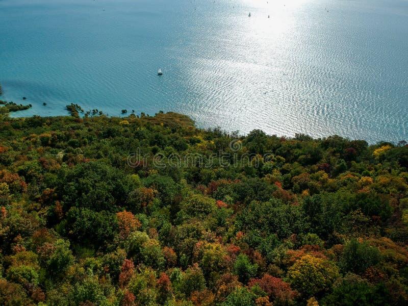 Colorful trees at lake Balaton. Hungary at autumn stock images