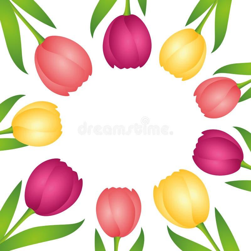 Colorful tulips circle border on white background royalty free illustration