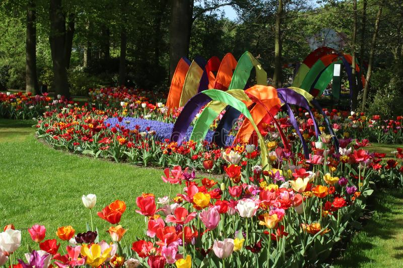 Colorful tulips fabric arches in display, Keukenhof stock image