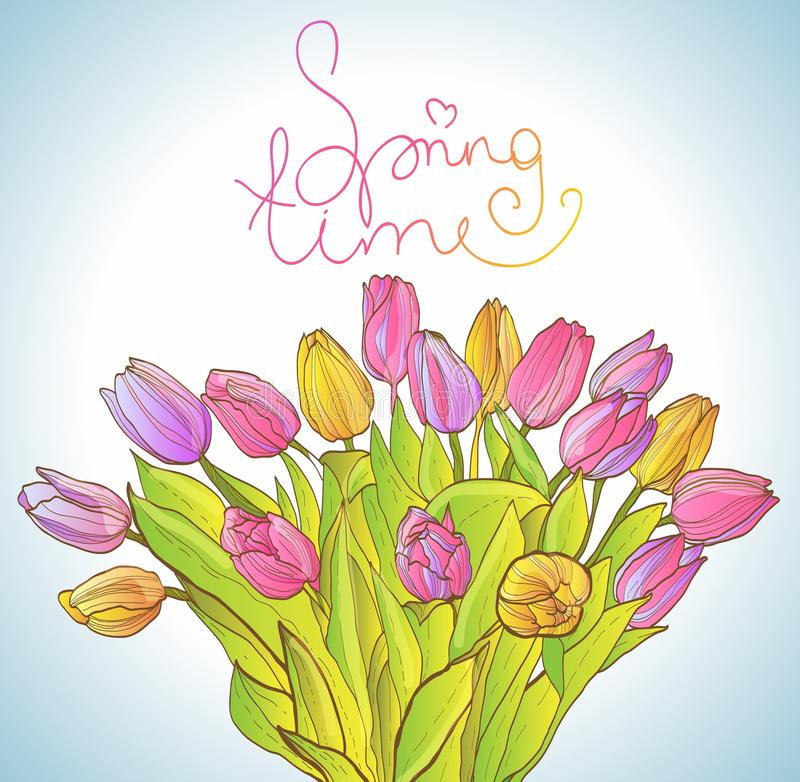 Download Colorful Tulips Royalty Free Stock Photo - Image: 30471105