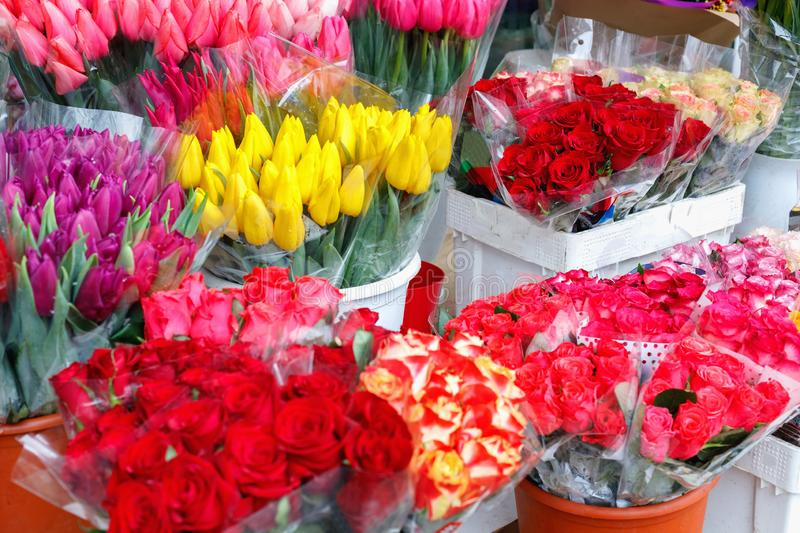 Colorful tulips, roses and other flowers in pots at entry. To small flower shop royalty free stock images