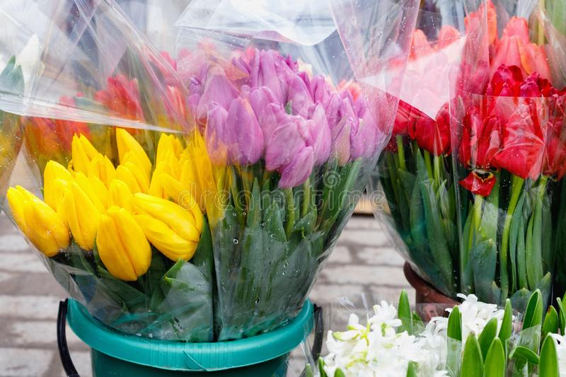 Colorful tulips, roses and other flowers in pots at entry. To small flower shop royalty free stock photo