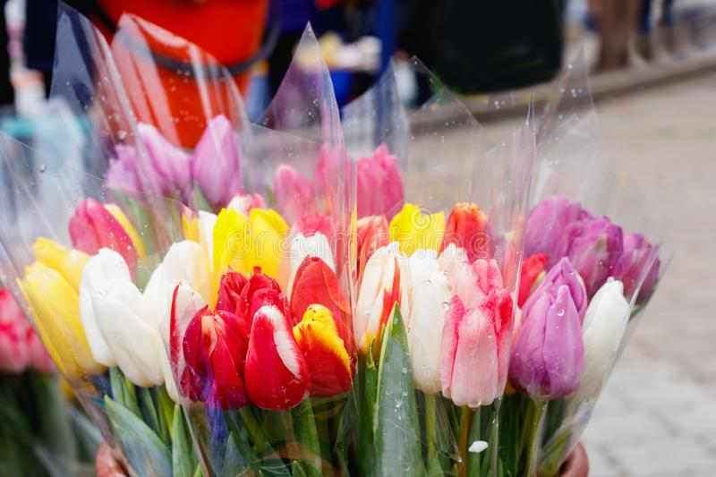 Colorful tulips, roses and other flowers in pots at entry. To small flower shop stock photo
