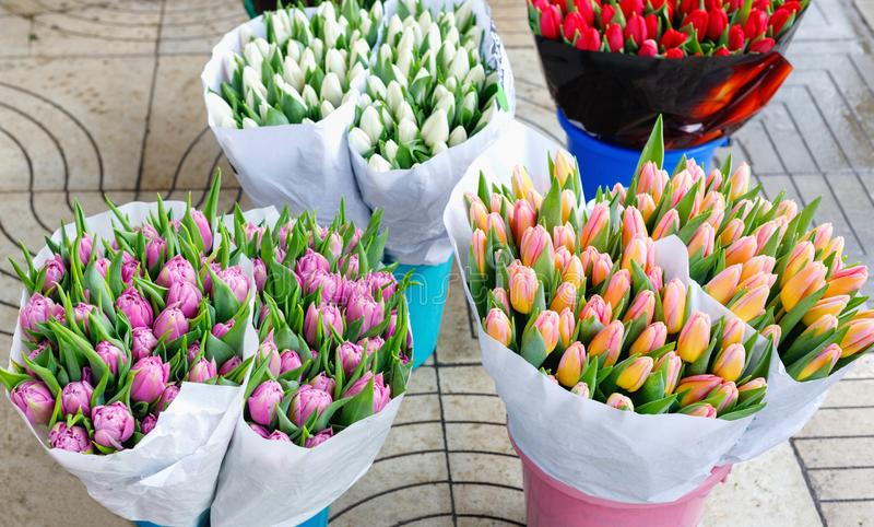 Colorful tulips, roses and other flowers in pots at entry. To small flower shop stock photos