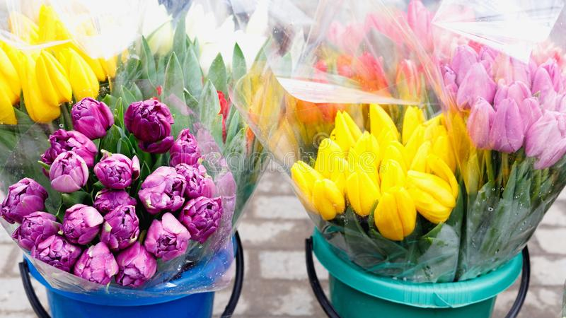 Colorful tulips, roses and other flowers in pots at entry. To small flower shop royalty free stock photos