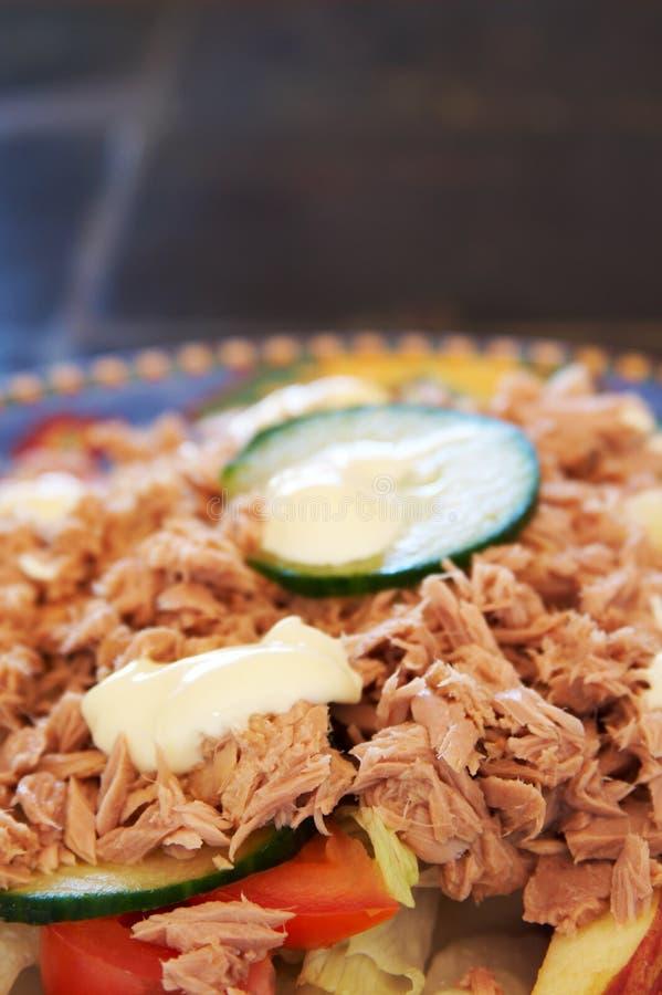 Download Colorful tuna salad. stock photo. Image of health, healthy - 2317028