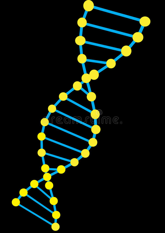 Colorful vector DNA model stock images