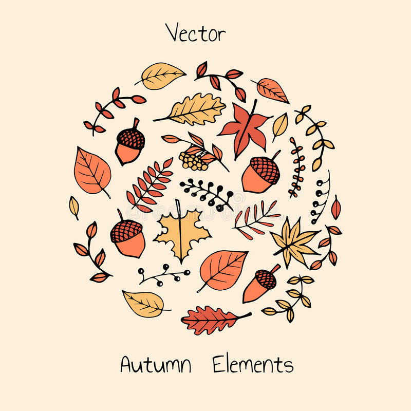 Colorful vector hand drawn set of autumn leaves, akorns and berries. stock illustration
