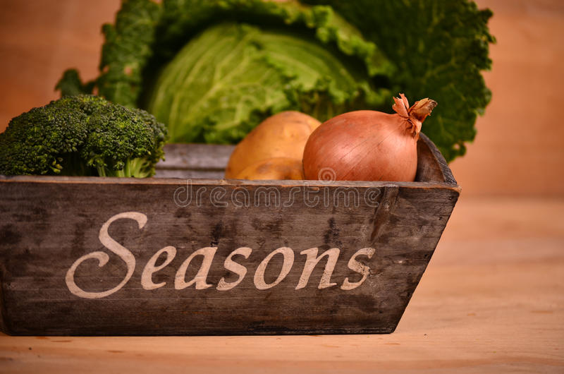 Colorful vegetables cabbage, cauliflower , broccoli, potato, onion on wooden table stock image
