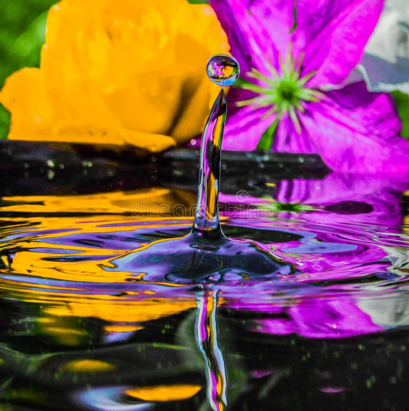 Colorful water drop with flowers in background royalty free stock images