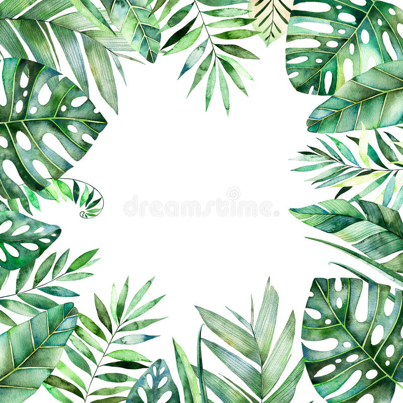 Free Colorful Watercolor Frame Border With Colorful Tropical Leaves. Stock Image - 90118461