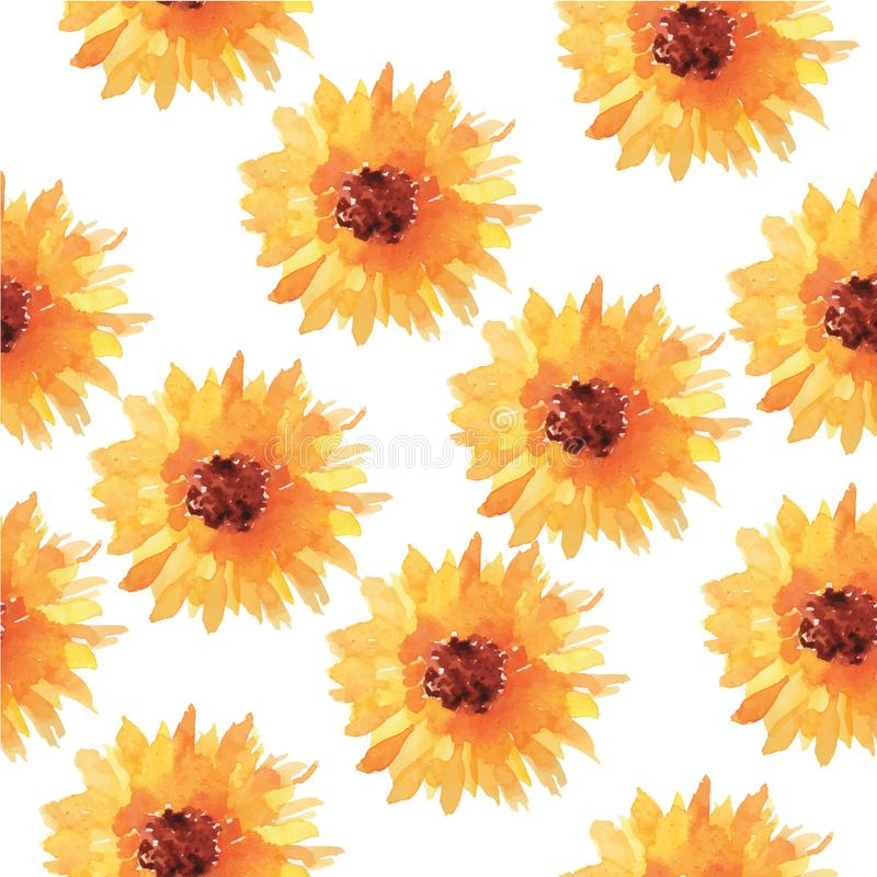 Sunflower watercolor seamless pattern. Colorful watercolor painted sunflower blossoms on white in seamless pattern vector illustration