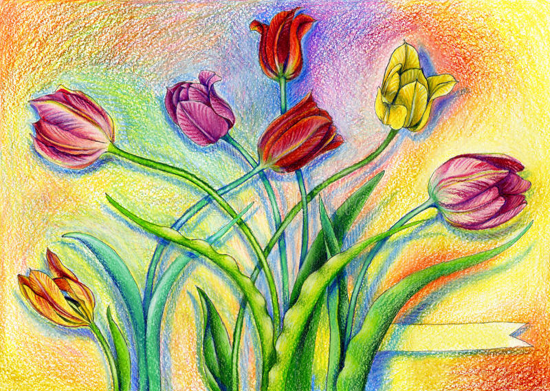 Colorful watercolor pencils tulips on artistic background. With sign ribbon vector illustration