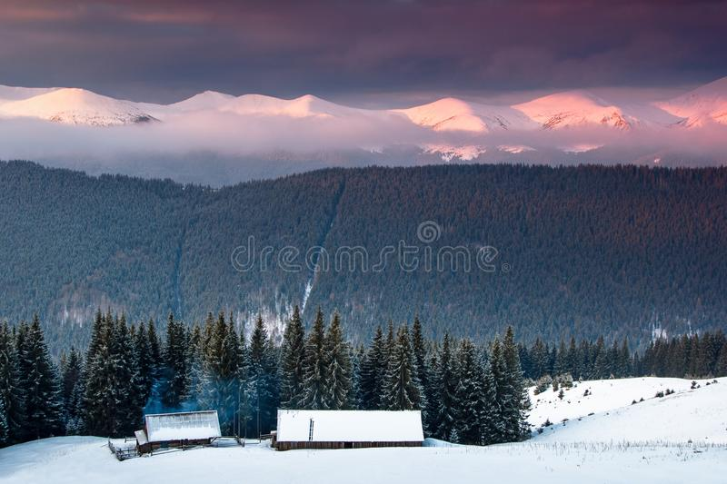 Colorful winter sunrise in the mountains. Fantastic morning glowing by sunlight. View of the snowy forest and old wooden hut cabin stock images
