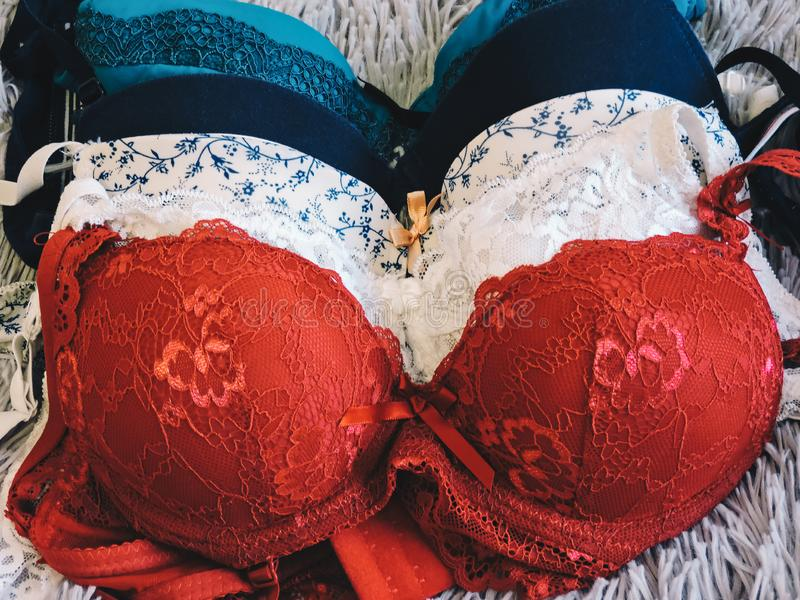 Colorful women sexy underwear. red bra and pantie.Copy space. Beauty, fashion blogger concept. royalty free stock photo
