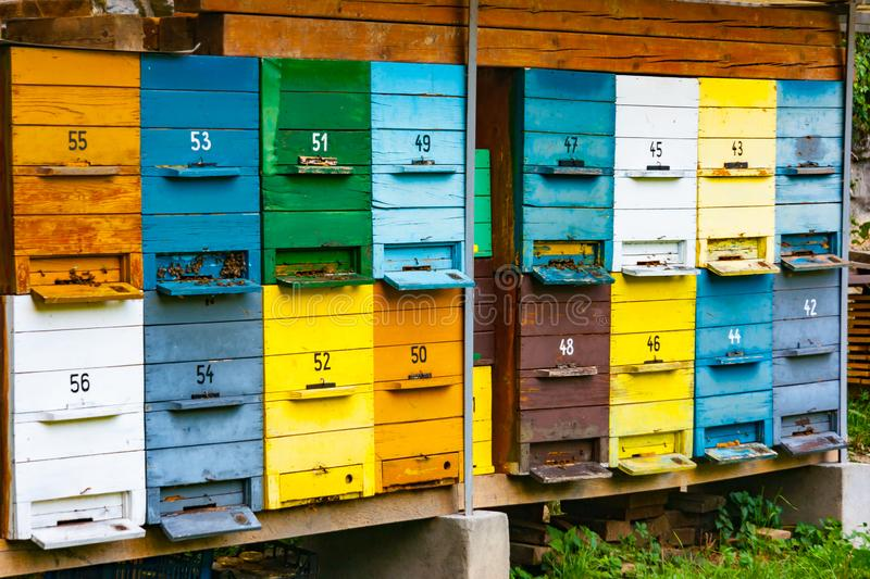 Colorful wooden bee hive boxes. Many colorful wooden bee hive boxes stacked in the forest near Bled, Upper Carniola, Slovenia stock images