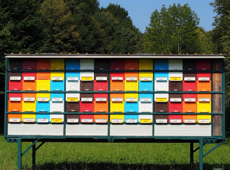 Colorful wooden beehives lined up and stacked in a large rectangular structure on a field. stock photography