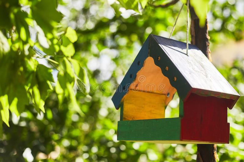 Colorful wooden bird house hanging from the tree and surrounded by lush foliage stock photography