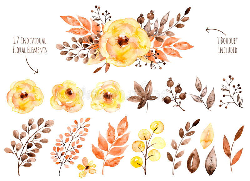Colorful yellow floral collection with leaves and flowers,drawing watercolor. Floral set.Colorful yellow floral collection with leaves and flowers,drawing