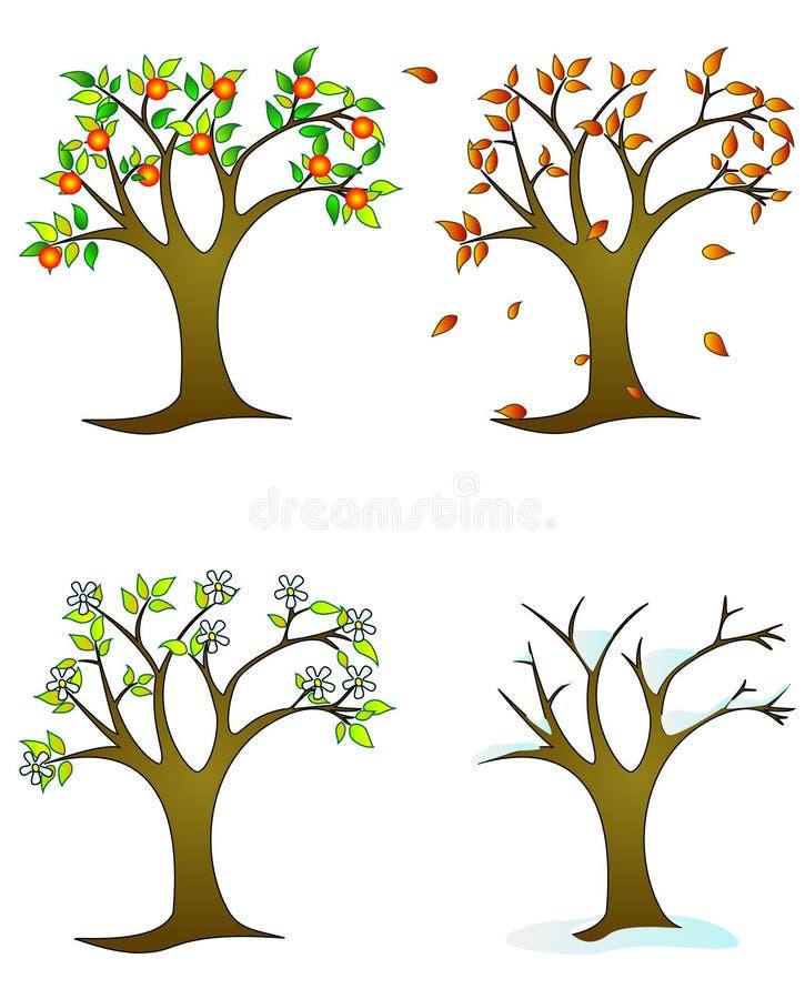 colorfull四个季节结构树 免版税图库摄影