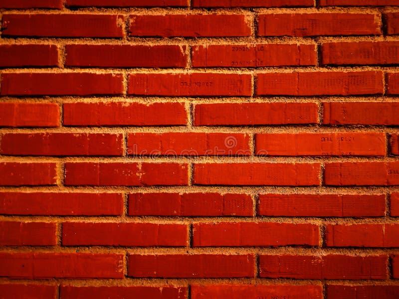 Colorfull стены ИСКУССТВА стоковые фото