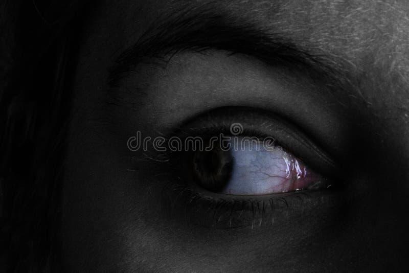 Colorfull i ciekawy oko z czerwonymi żyłami zdjęcie royalty free