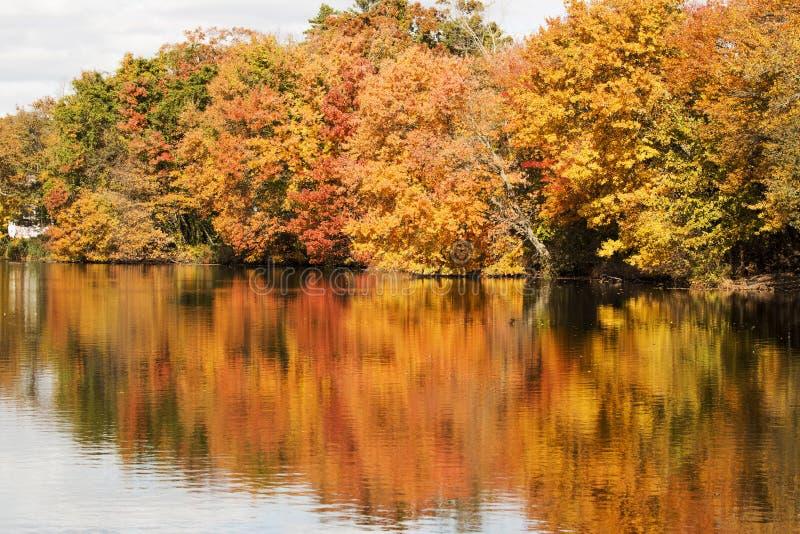 Colorfull nedgångsidor som reflekterar i det Southards dammet royaltyfria bilder