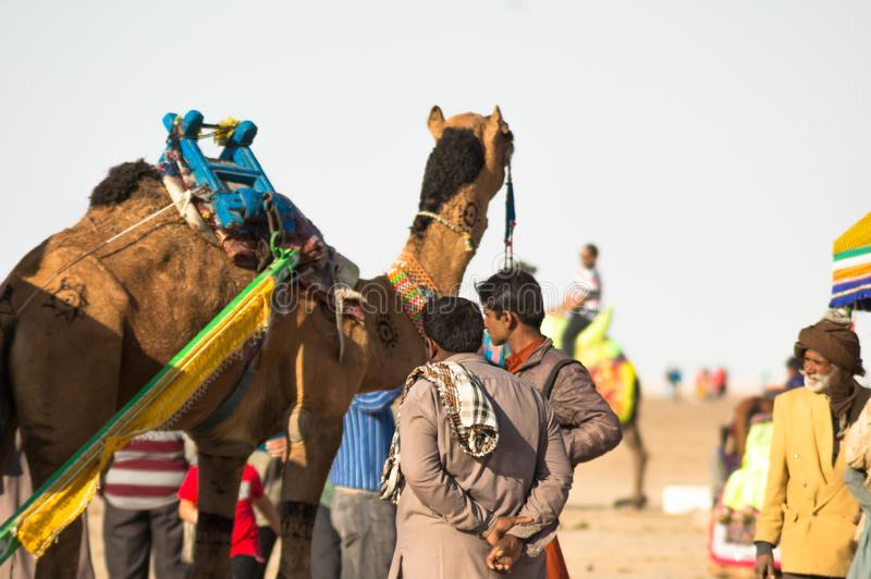 Colorfully decorated camel and it's owner standing together waiting for tourists to take a ride stock photo