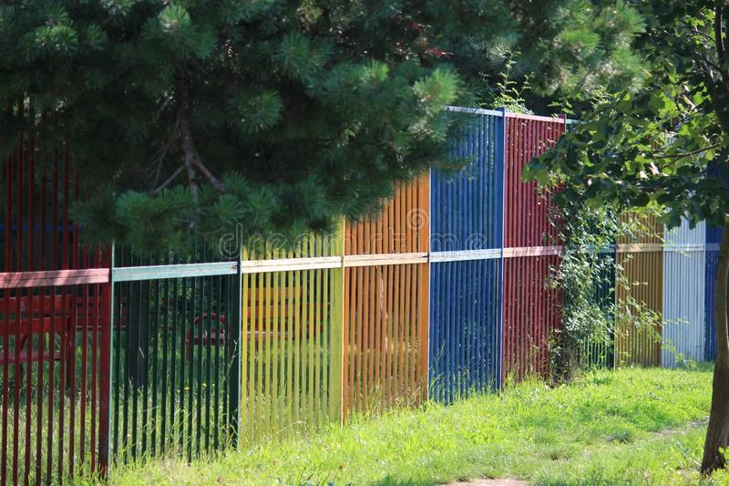 Colorfully painted fence. Down the grass and the top are fresh green branches of fir royalty free stock photos