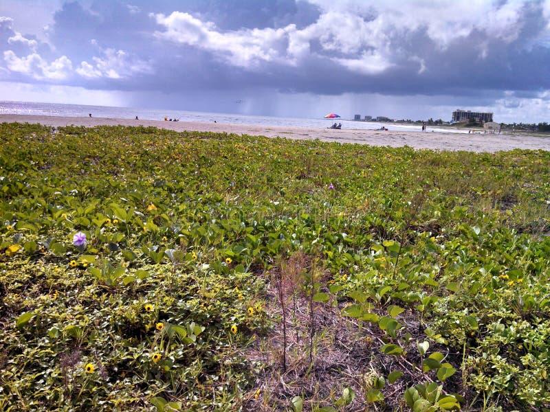 Colori costieri immagine stock immagine di caldo vista - Immagine di terra a colori ...