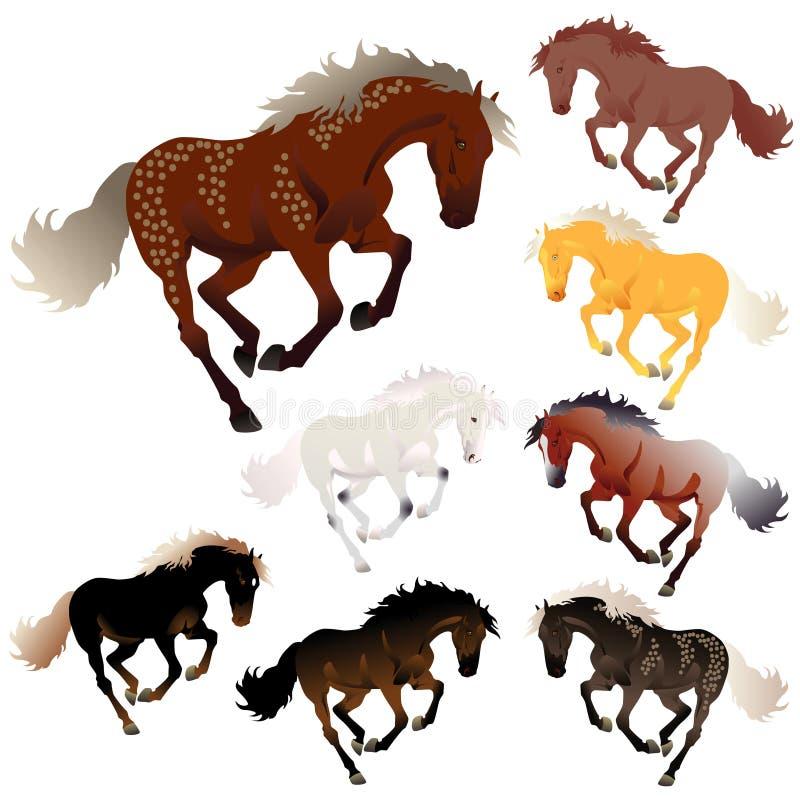 Colori del cavallo dell'accumulazione di vettore illustrazione vettoriale